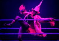 Grace_Jones_Live_Performance_o