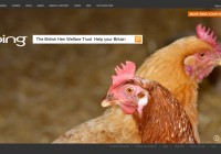 Bing_British-Hen-Welfare-Trust_Help-your-Britain_Campaign_e