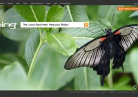 Bing_The-Living-Rainforest_Help-your-Britain_Campaign_e