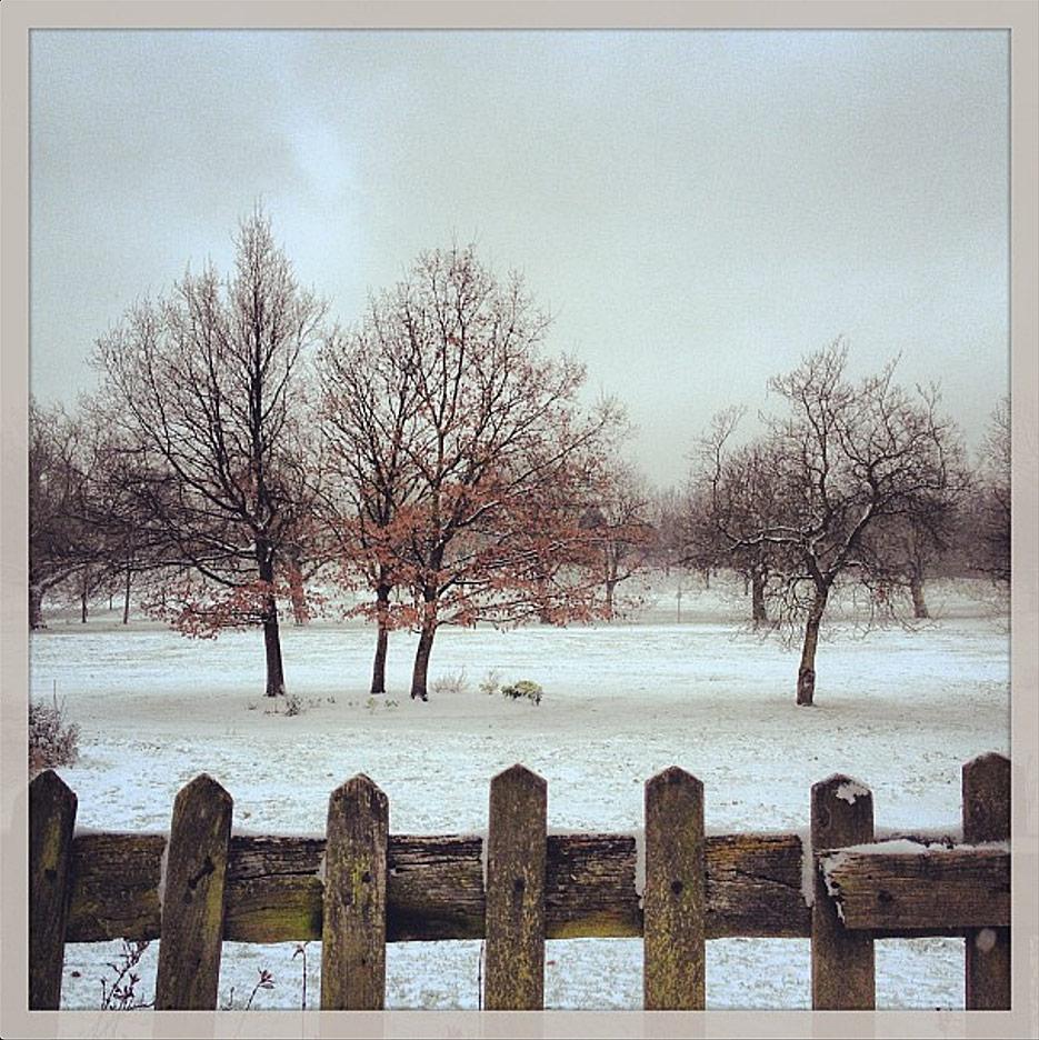 winter-wonder
